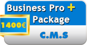 Business Pro Plus internet package from 1350€