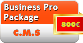 Business Pro Internet package from 750€