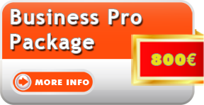 Image of website design business pro package